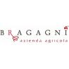 Bragagni